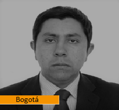 ING. CARLOS RAMÍREZ GUZMÁN