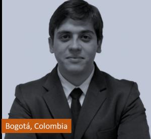 Diego Alberto Rincon Yañez